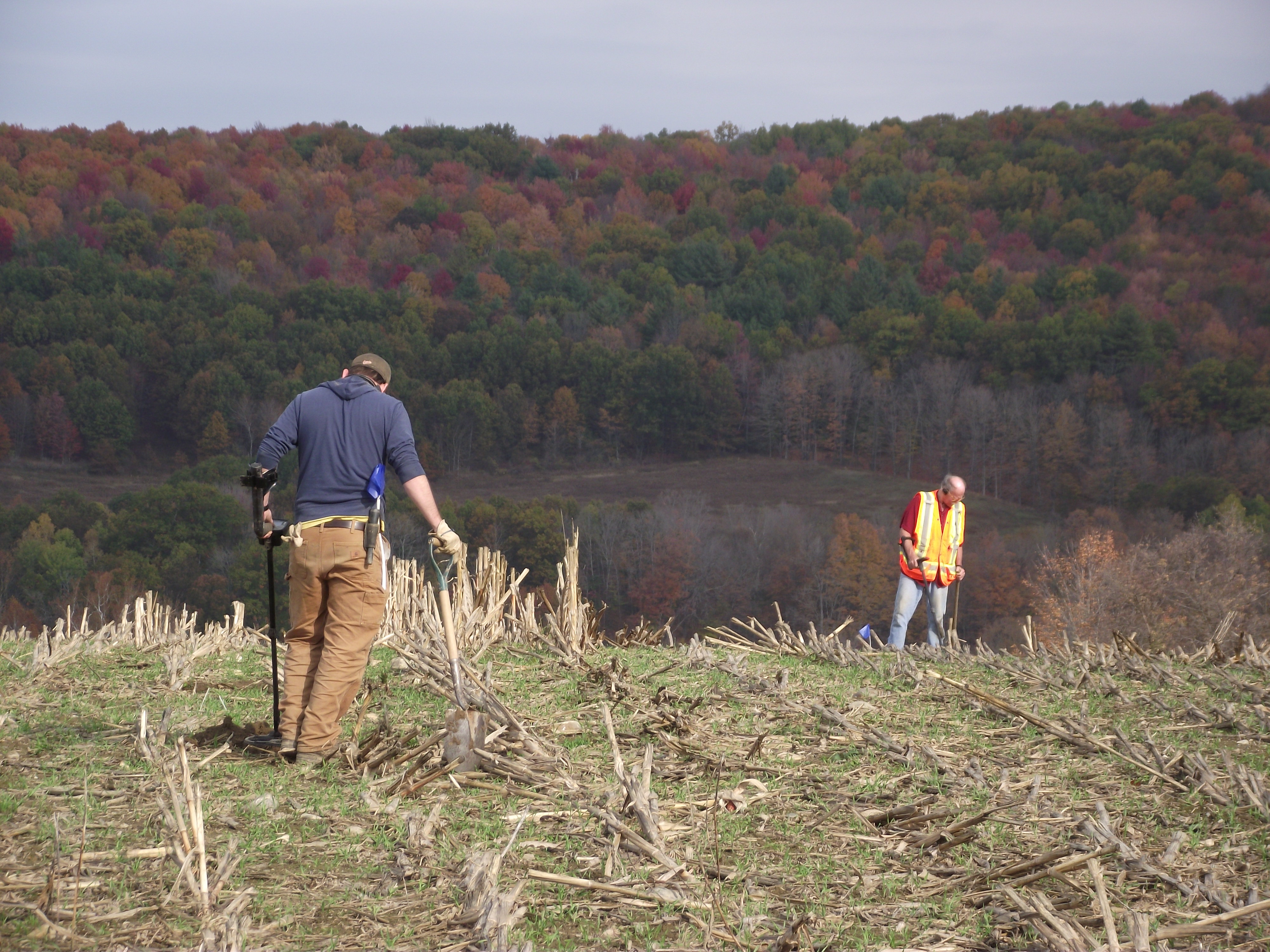 CHG workers examining a field